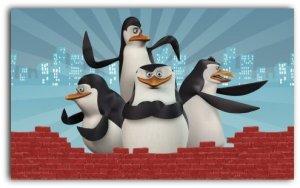 pinguini. 3