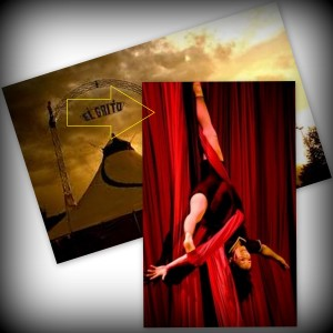 collage circo